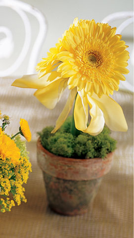 Yellow Gerbera Centerpeice